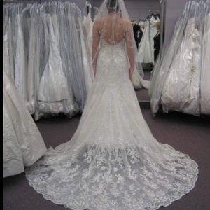 Allure wedding dress and veil